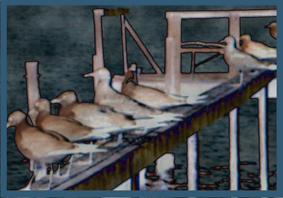 Dock Flock Drawing  - Dock Flock Fine Art Print