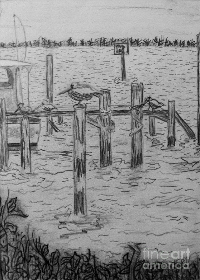 Dock Sketch Drawing  - Dock Sketch Fine Art Print