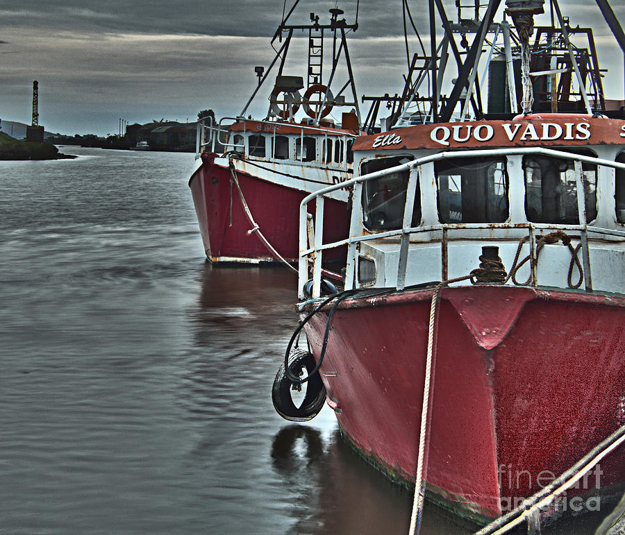 Docking Photograph  - Docking Fine Art Print