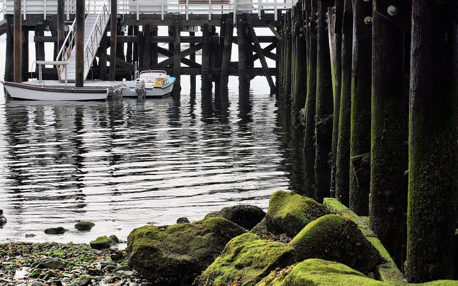 Dockside 2 Photograph