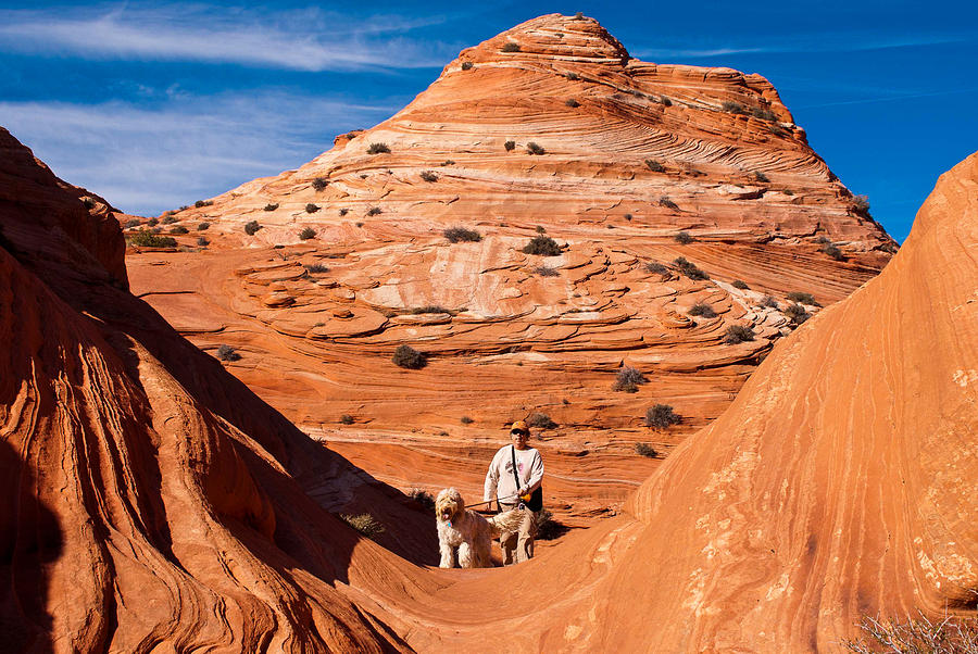 Dog And Hiker Coyote Buttes Arizona And Utah Photograph  - Dog And Hiker Coyote Buttes Arizona And Utah Fine Art Print
