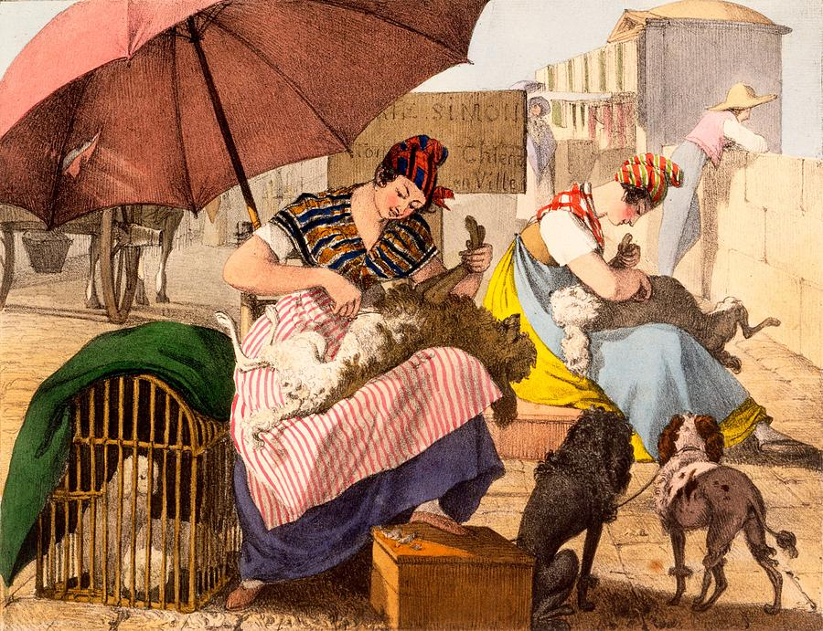 Dog Groomers Drawing - Dog Groomers, 1820 by French School