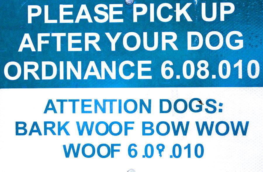 Dog Ordinance Photograph