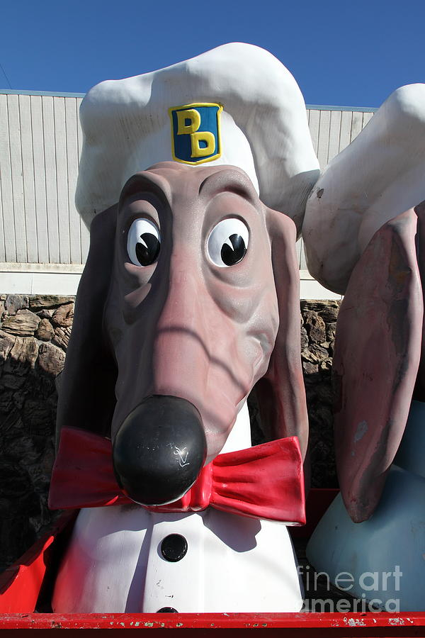 Doggie Diner Dog - Red Bow Tie - 5d20934 Photograph