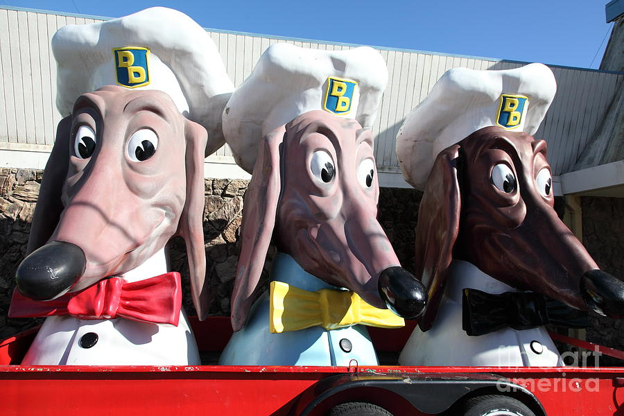 Doggie Diner Dogs - 5d20931 Photograph