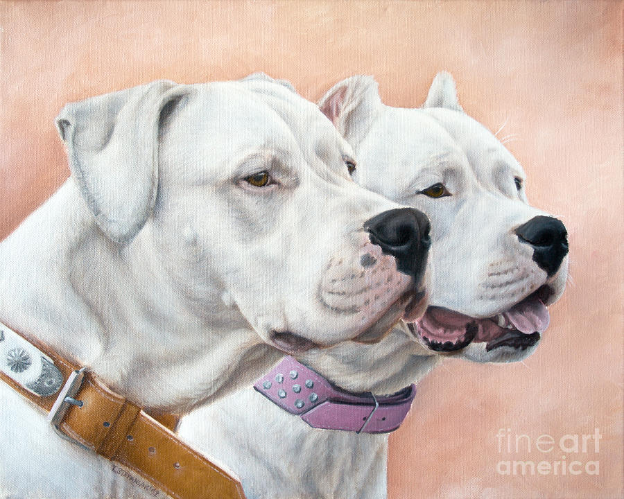 Dogo Argentino Painting