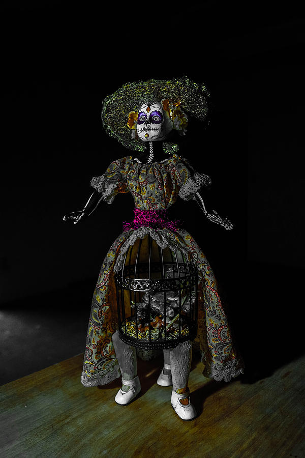 Gothic Photograph - Doll With Dead Bird In New Orleans by Louis Maistros