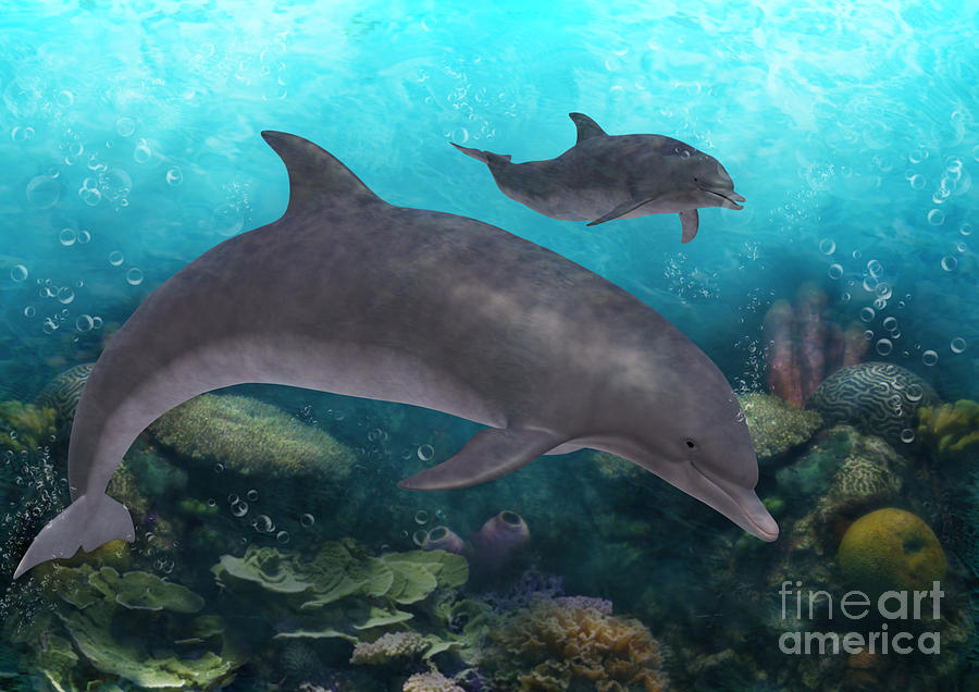 Dolphins Under The Sea by Elle Arden Walby