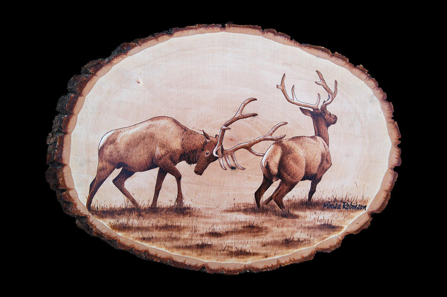 Dominance Pyrography