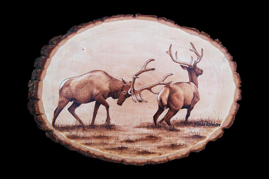 Elk Pyrography - Dominance by Minisa Robinson