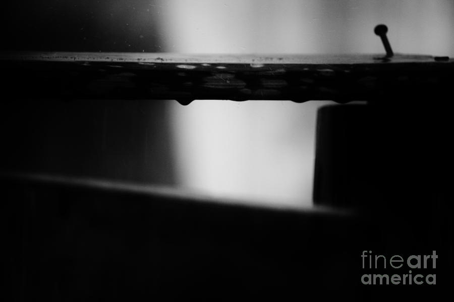 Dont Fix Me Im Not Broken  Photograph  - Dont Fix Me Im Not Broken  Fine Art Print