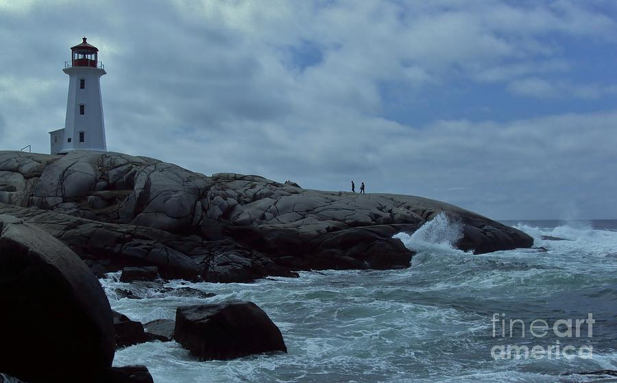 Dove In The Wave At Peggys Cove Photograph