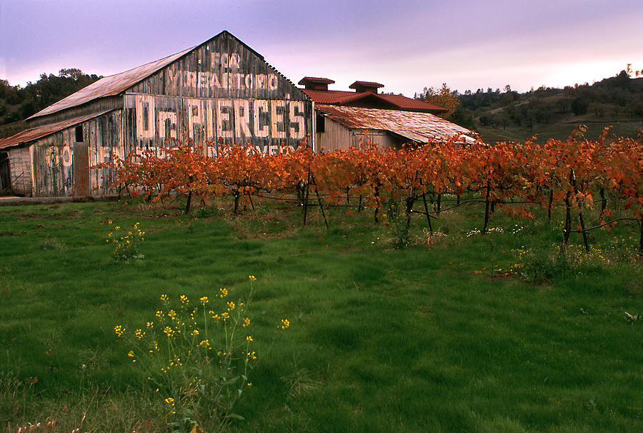 Dr Pierces Barn Billboard Photograph