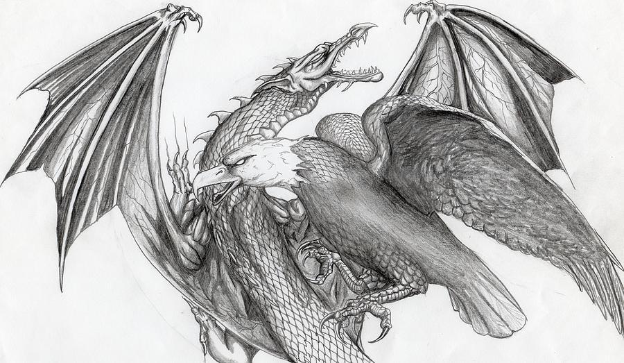 Eagle Vs Dragon Drawing Dragon W Eagle Drawing