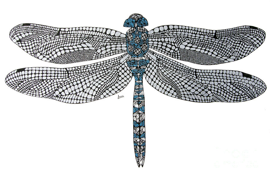 Dragonfly Drawing By Leanne Karlstrom