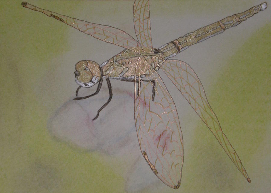 Dragonfly Visitor Painting  - Dragonfly Visitor Fine Art Print