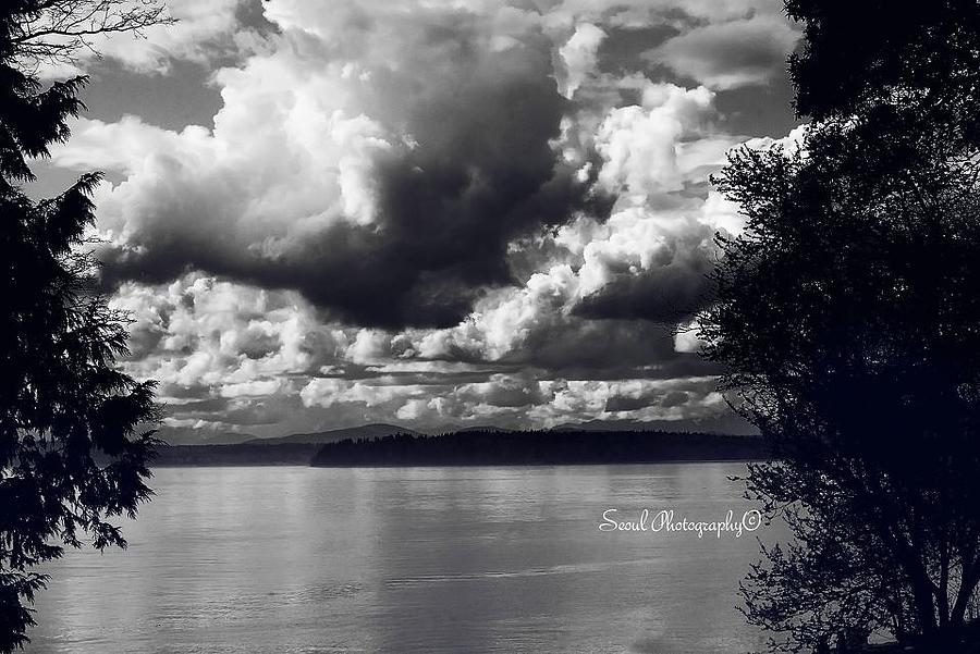 Dramatic Black And White Photograph  - Dramatic Black And White Fine Art Print