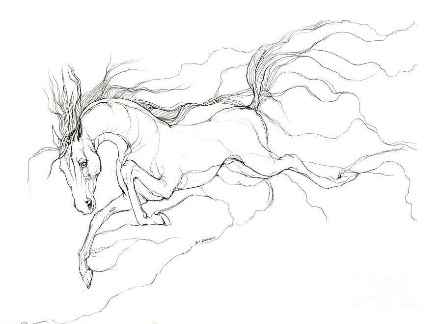 Dream Horse Drawing