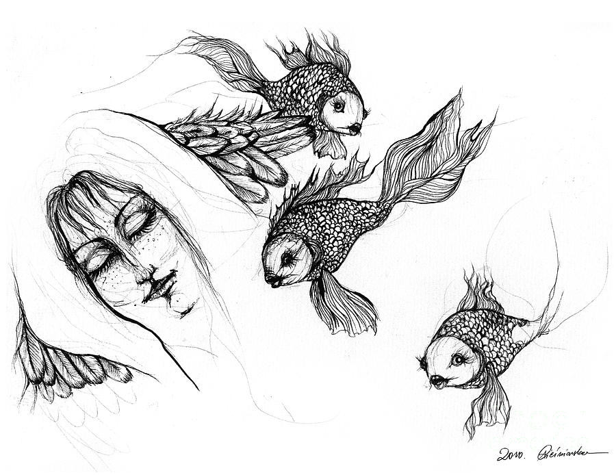 Dream Of Goldfish Drawing