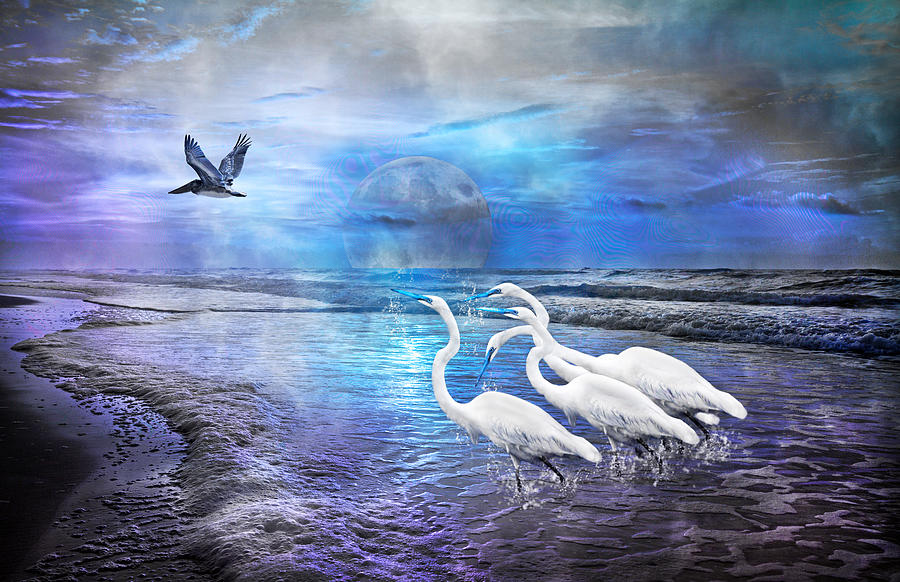Dreaming Of Egrets By The Sea IIi Digital Art  - Dreaming Of Egrets By The Sea IIi Fine Art Print