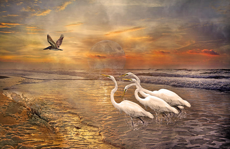 Dreaming Of Egrets By The Sea Iv Digital Art  - Dreaming Of Egrets By The Sea Iv Fine Art Print