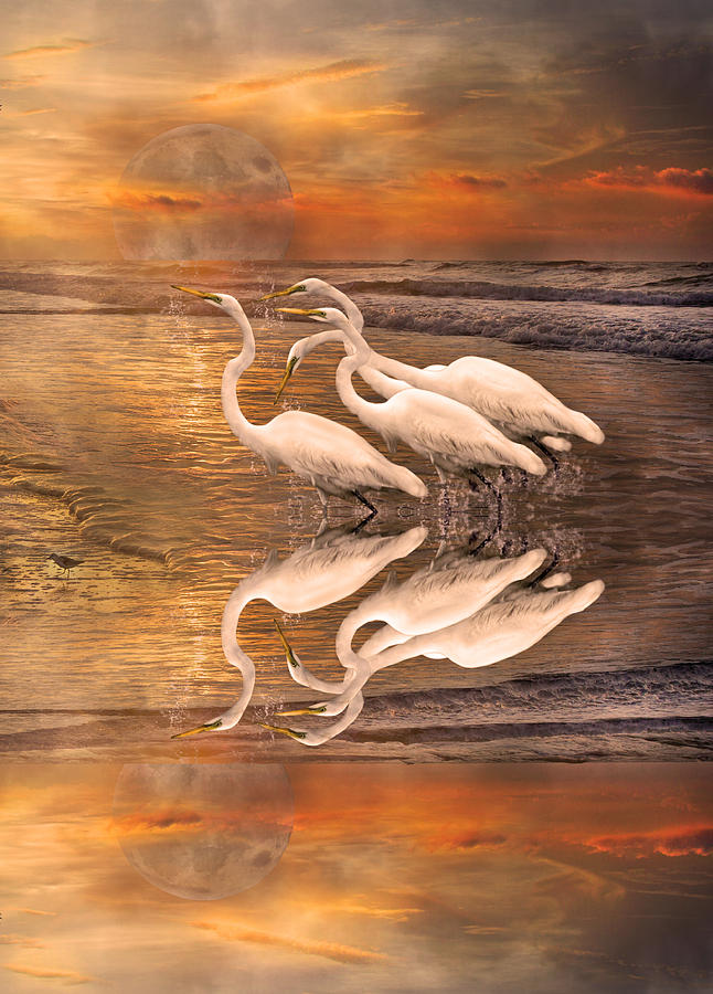 Dreaming Of Egrets By The Sea Reflection Digital Art  - Dreaming Of Egrets By The Sea Reflection Fine Art Print