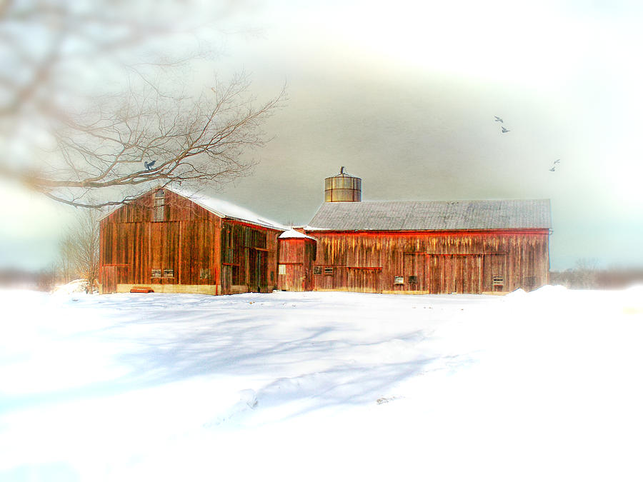 Dreams Of A White Christmas Photograph  - Dreams Of A White Christmas Fine Art Print