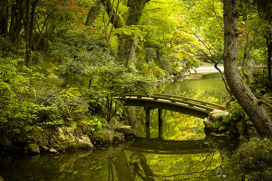 Japan Photograph - Dreamy Japanese Garden by Sebastian Musial