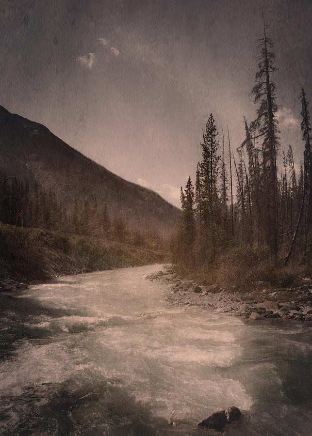 Dreamy River Photograph