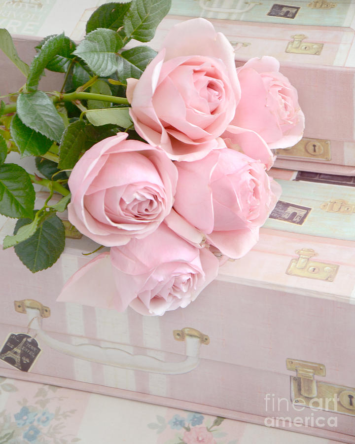 Dreamy Shabby Chic Pastel Pink Roses On Pink Suitcases