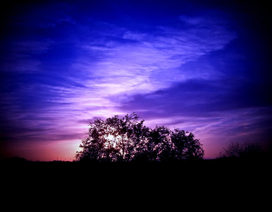 Dreamy Sunset Sky With Silhouette Photograph  - Dreamy Sunset Sky With Silhouette Fine Art Print