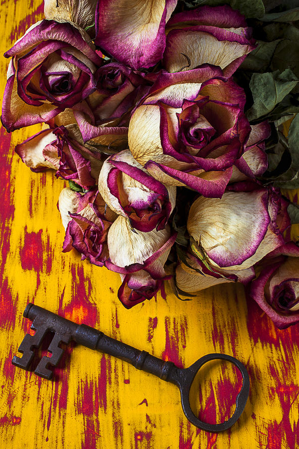 Dried Pink Roses And Key Photograph