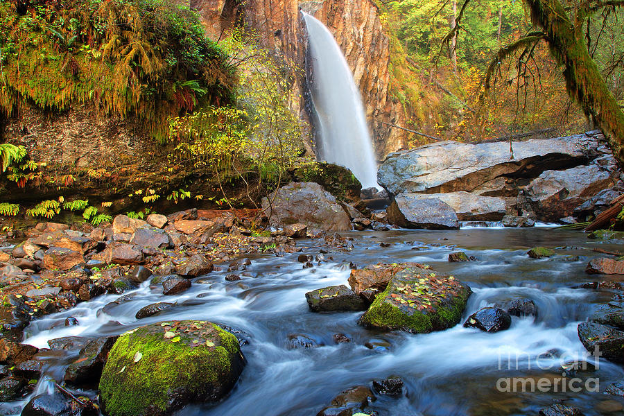 Drift Creek Falls Photograph