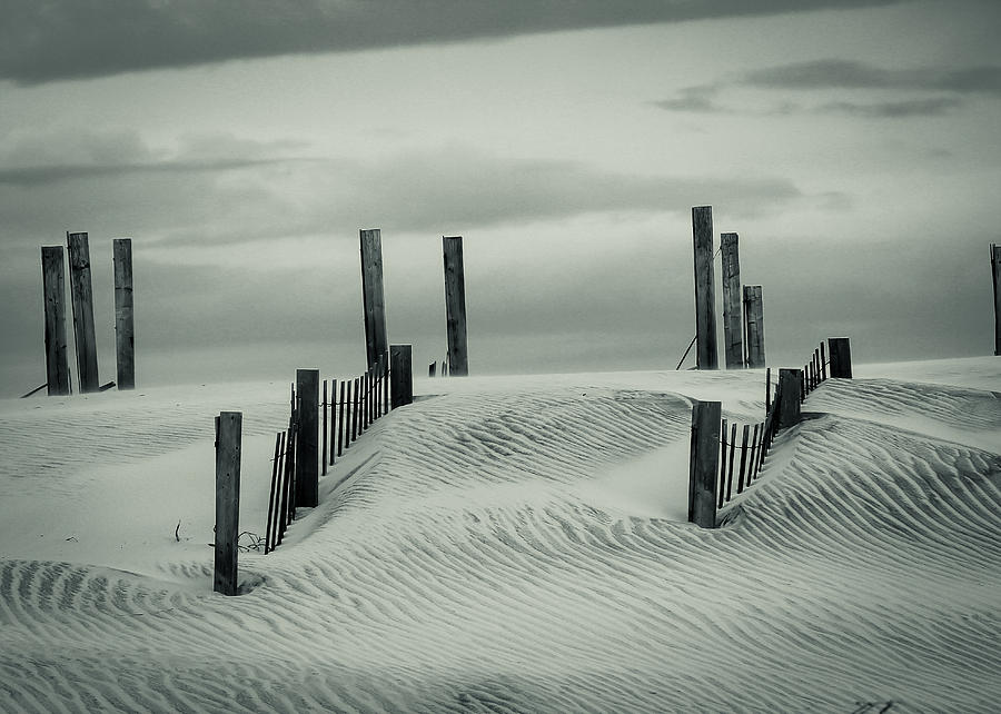 Drifting Dunes Photograph