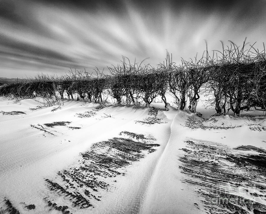 Drifting Snow Photograph