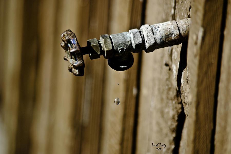 Drip...drip...drip...drip Photograph