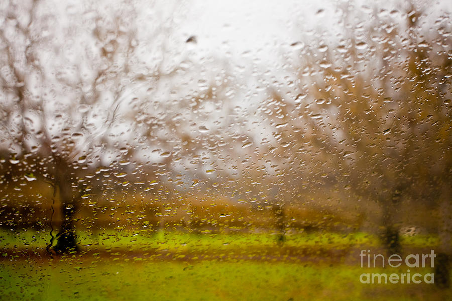 Droplets I Photograph  - Droplets I Fine Art Print