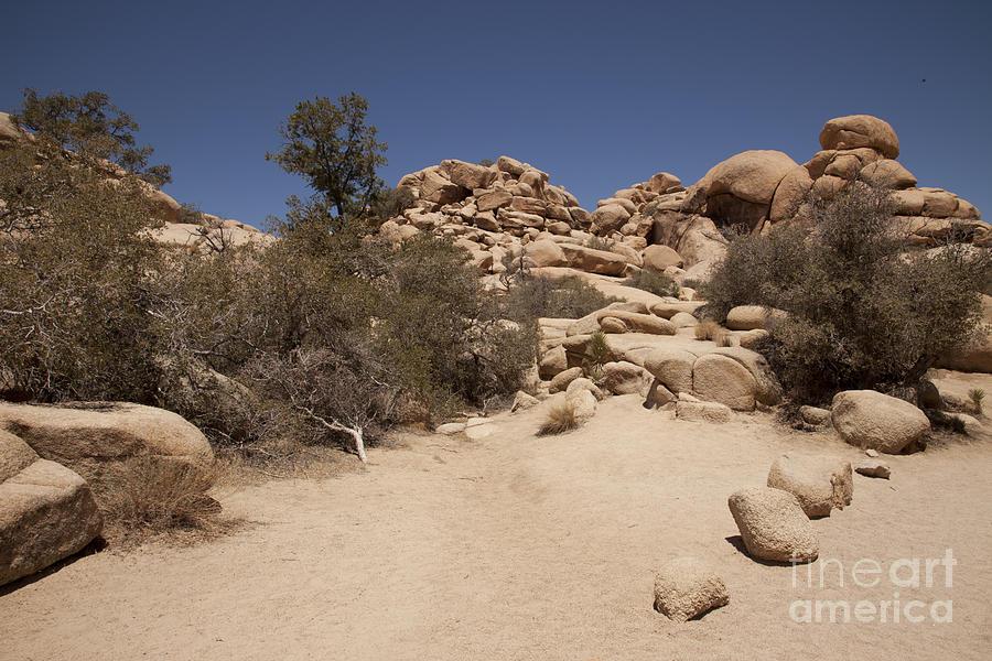 Dry Air Photograph