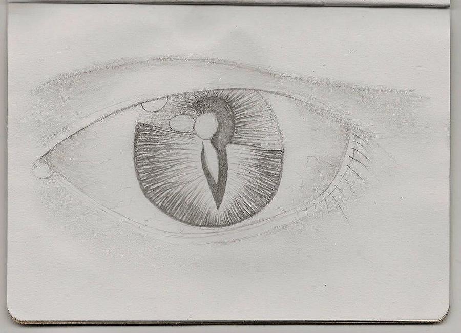 Dual Internal Self Drawing