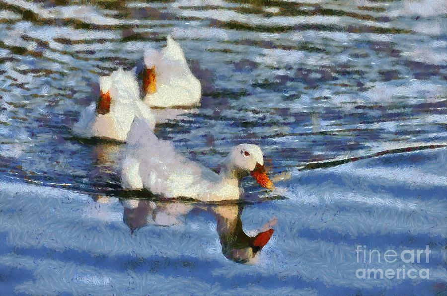 Ducks Painting Painting  - Ducks Painting Fine Art Print