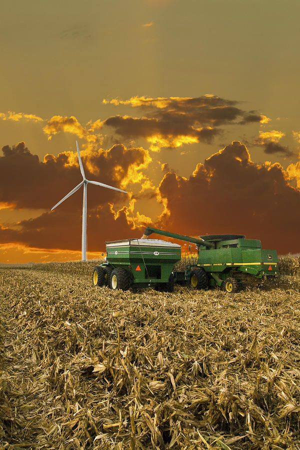 an introduction to the issue of canadian corn dumping probe Obituaries for the last 7 days on your life moments.