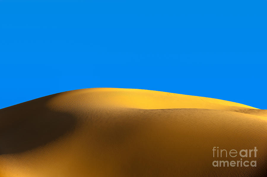 The Dune Photograph