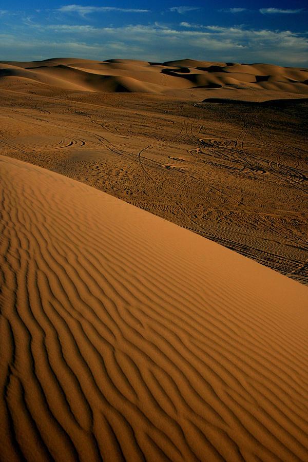 Dune Sunset Photograph