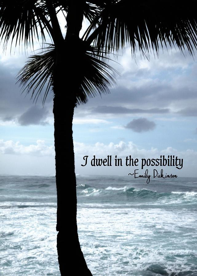 Paradise Quotes Amusing Paradise Quotes Classy 25 Best Paradise Quotes Ideas On Pinterest