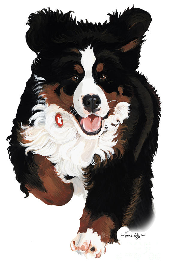 Bernese Mountain Dog Painting - Dylan Rocks by Liane Weyers