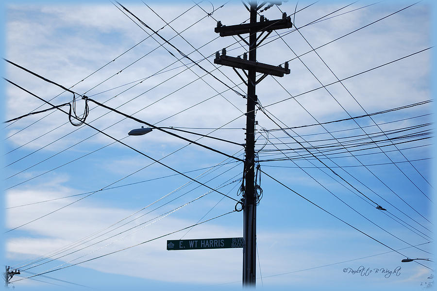 Feature Photograph - E Wt Harris Blvd - Charlotte by Paulette B Wright