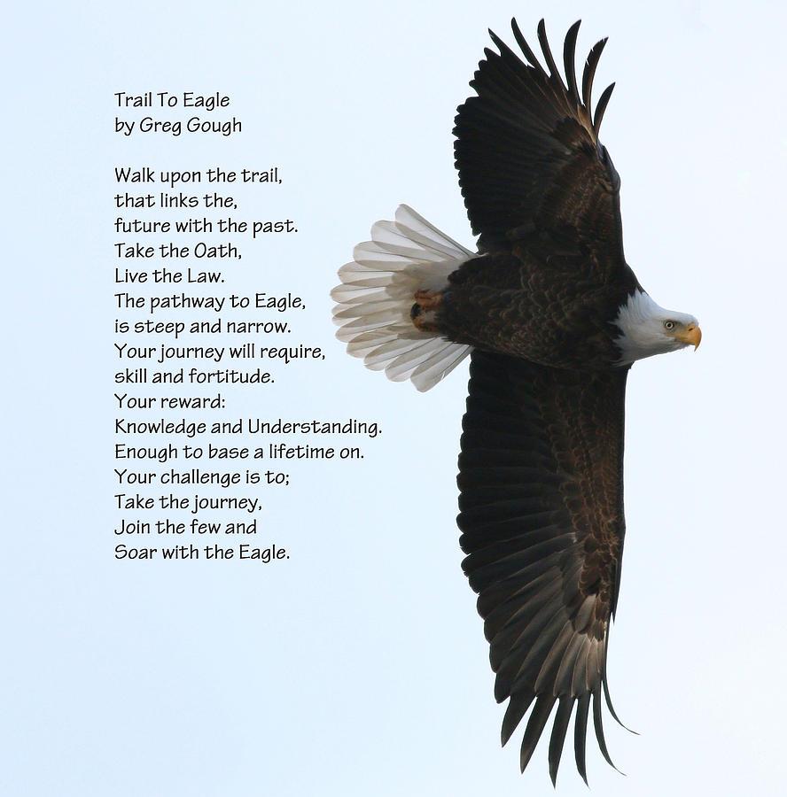Eagle poem