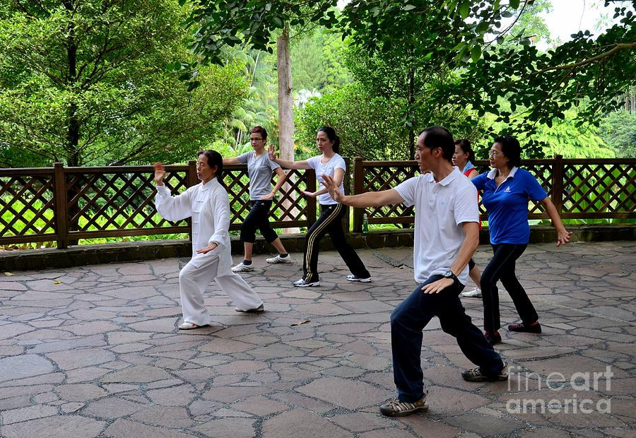 Early Morning Tai Chi Exercise In Park Photograph  - Early Morning Tai Chi Exercise In Park Fine Art Print