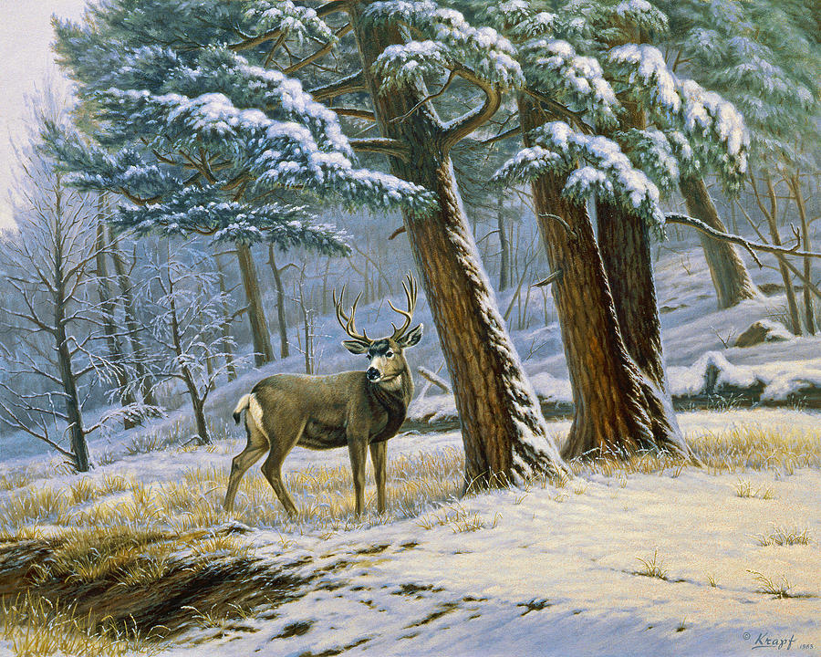 Early Snow- Mule Deer Painting