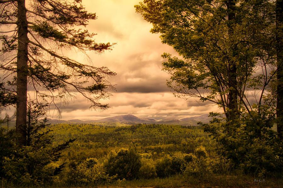 Appalachian Trail Photograph - Early Spring Rain by Bob Orsillo